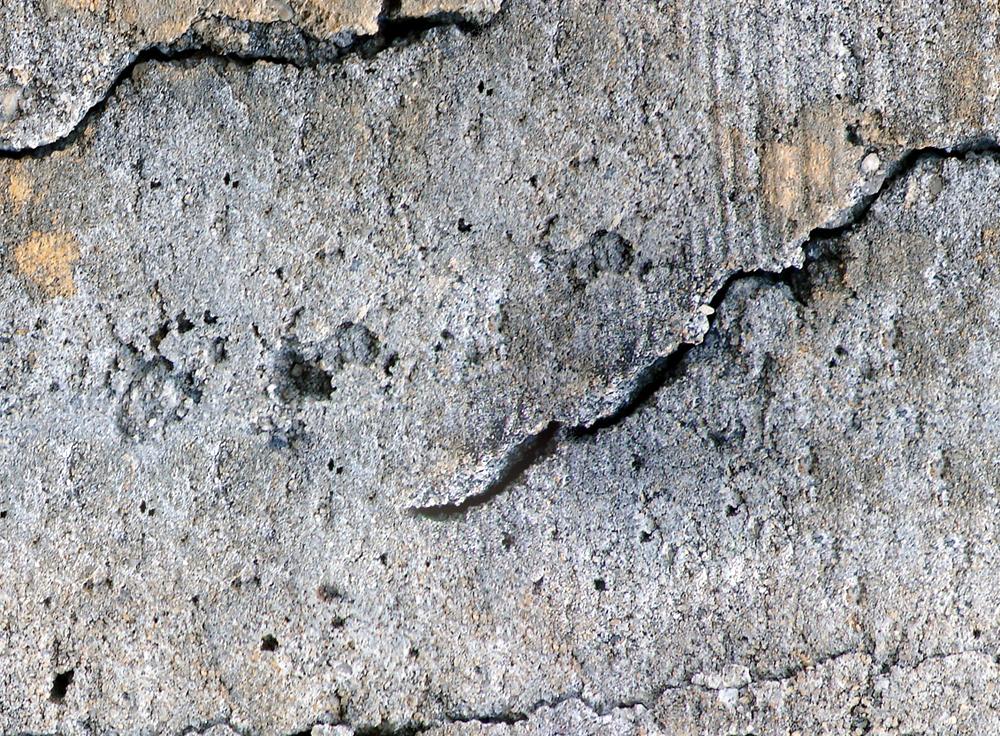 Stenvägg med inslag av guld